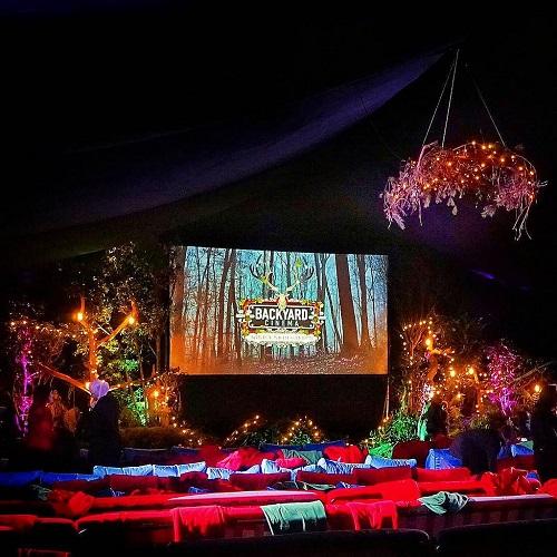 Backyard Theatre Room