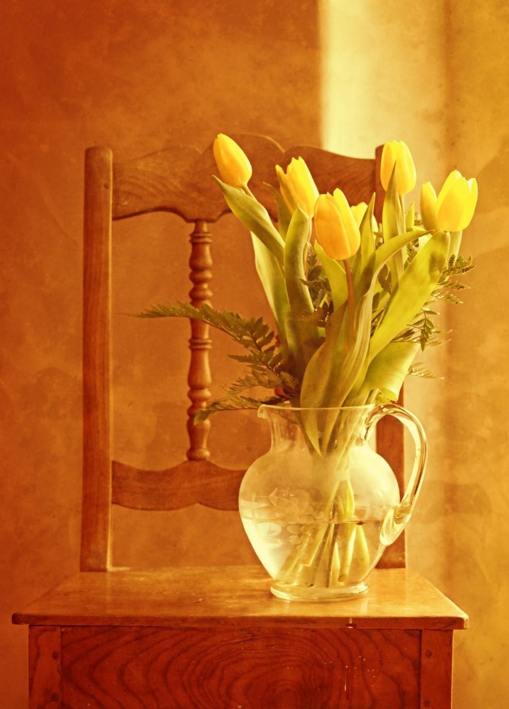 spring granny flat designs